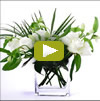 Twiggs Floral Design ~ Orchids